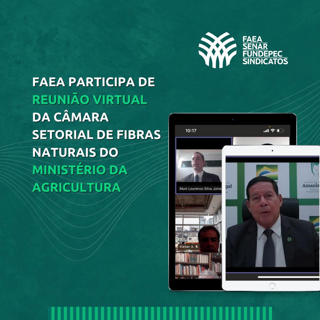 FAEA Participa de reunião virtual da câmara setorial de fibras naturais do ministério da agricultura