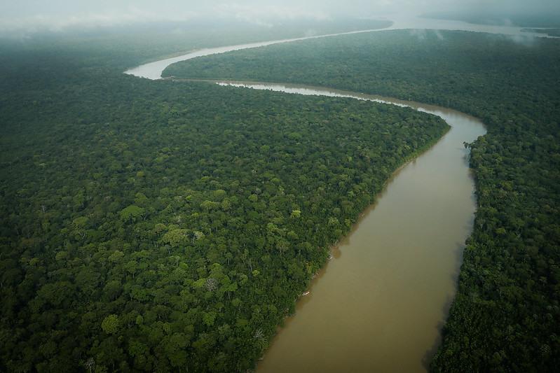 CNA diz que produção de fibras naturais é alternativa para desenvolvimento da Amazônia