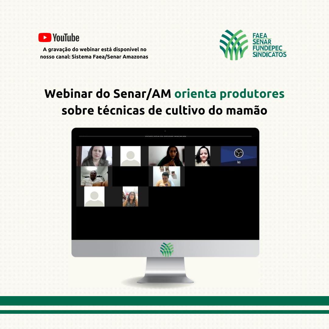 Webinar do Senar/AM orienta produtores sobre técnicas de cultivo do mamão