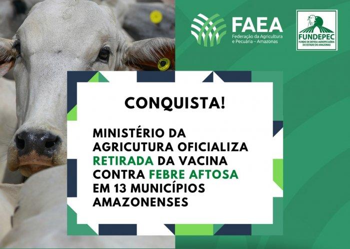 Vitória histórica: Mapa oficializa retirada da vacinação contra febre aftosa em 13 municípios amazonenses